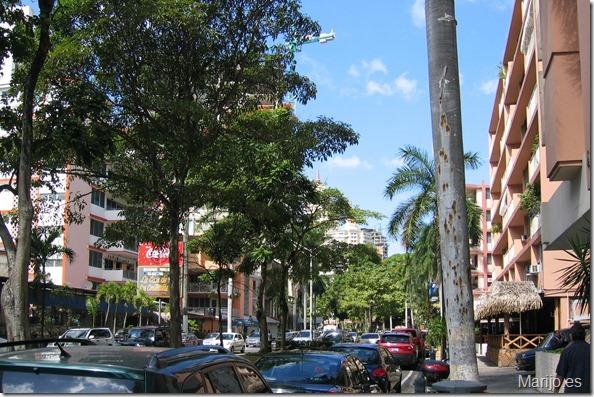 Salir de la rutina en Panama - Tour Cangrejo (03)