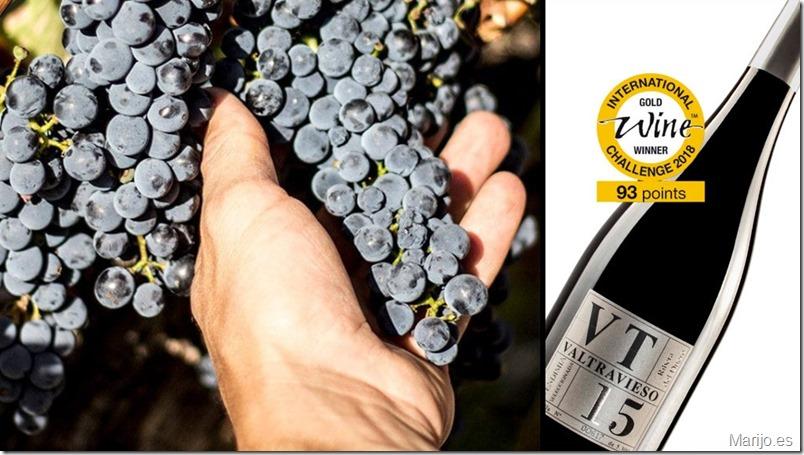 bodegas-valtravieso-vinos-ribera del duero