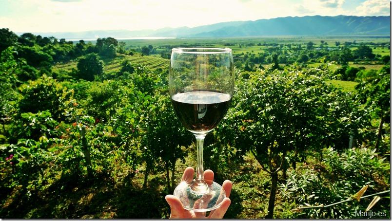 Los vinos de Madrid presentes en los cursos de verano de El Escorial